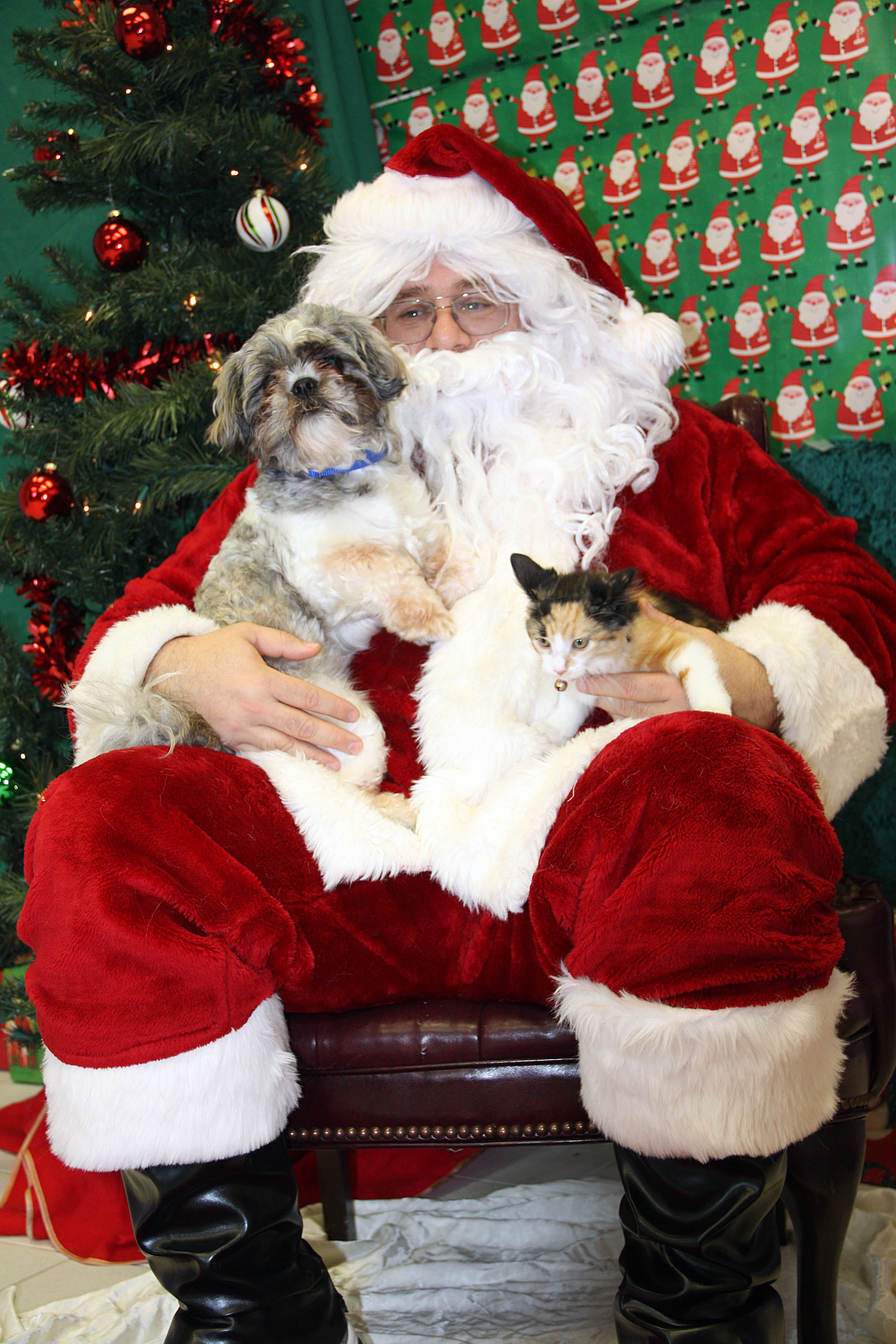 Santa with pet pictures