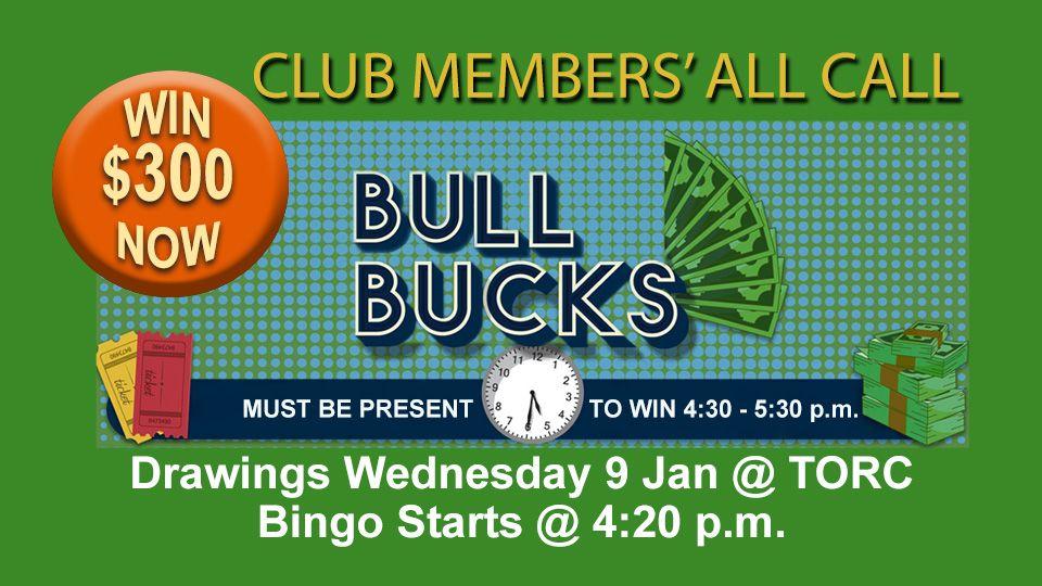 Bull Bucks Drawings